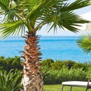 07-beachfront-villas-with-private-pool-peloponnese-4185