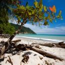 Playa-Cabo-Blanco-Nicoya-Peninsula (Копировать)