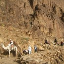 Sinai (73)_web