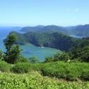 cliff_tropic