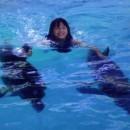 dolphin_swimming_10 (Копировать)
