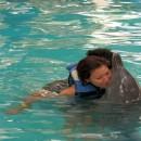 dolphin_swimming_11 (Копировать)