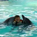 dolphin_swimming_13 (Копировать)