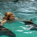 dolphin_swimming_14 (Копировать)