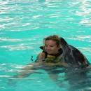 dolphin_swimming_6 (Копировать)