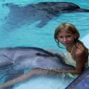 dolphin_therapy_3 (Копировать)